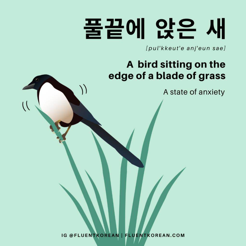 A Bird Sitting on a Blade of Grass