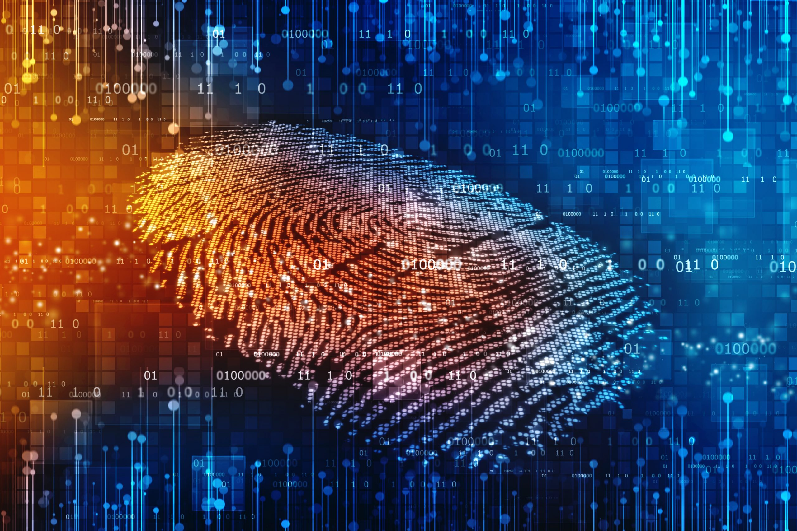 Biometric Quality: Four issues that challenge biometrics today