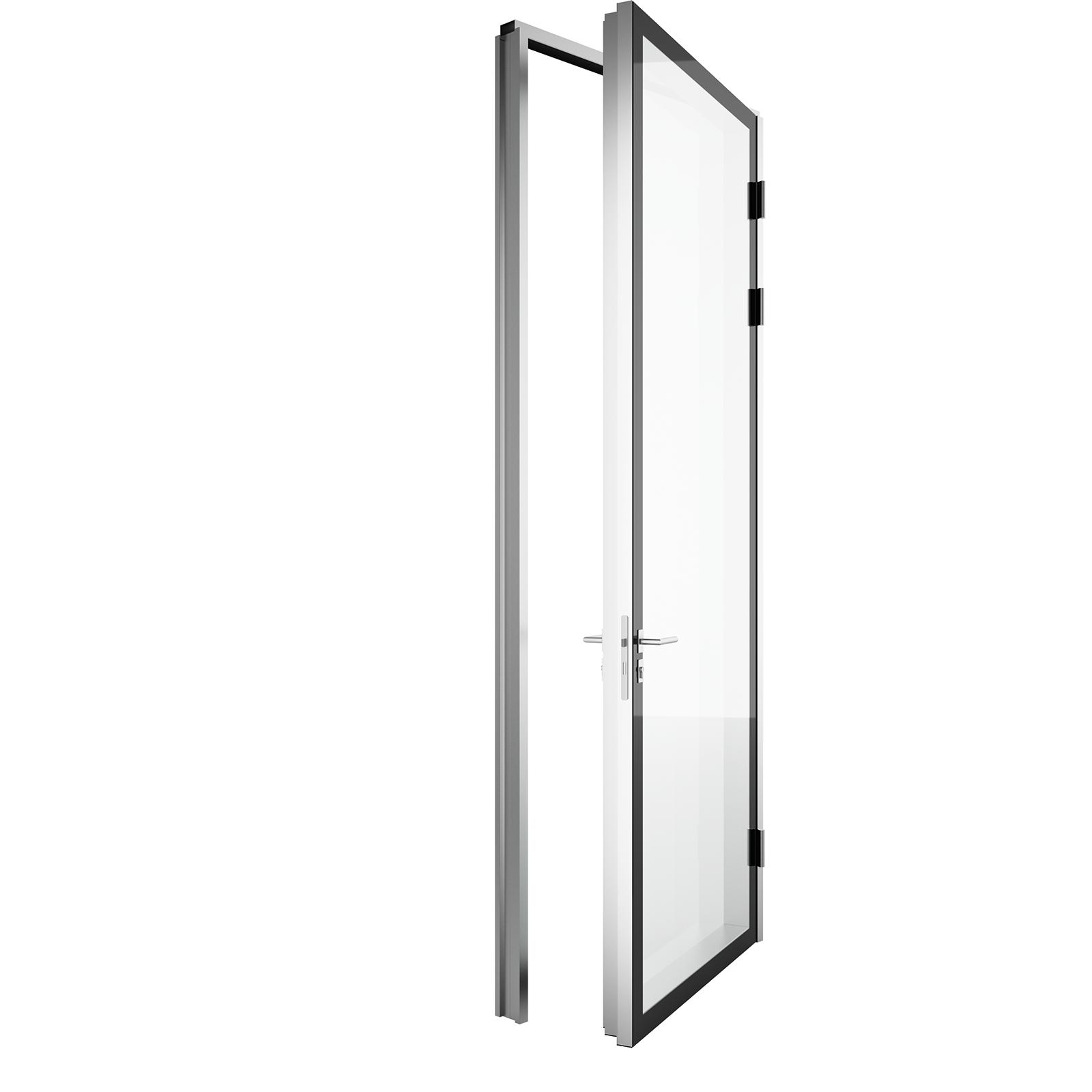 Glass Skin Door