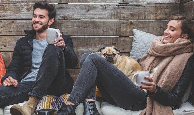 Los españoles prefieren viajar con sus mascotas