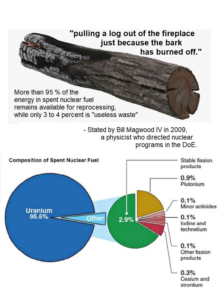 Partially Burnt Log as compared to SNF 8-12-19
