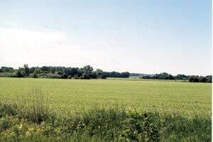 Eureka Township farmland