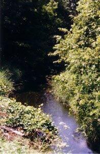 Vermillion River in Minnesota