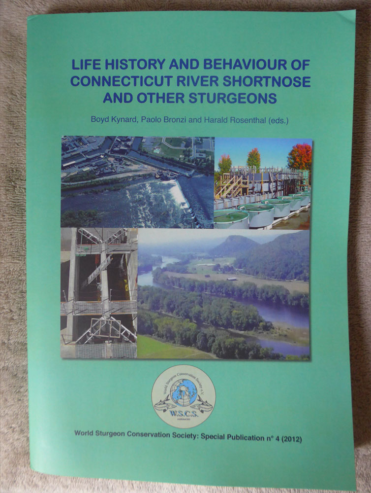 LIFE HISTORY AND BEHAVIOUR OF CONNECTICUT RIVER SHORTNOSE AND OTHER STURGEONS