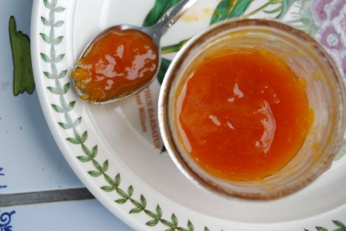 Naptime Chef Apricot Jam