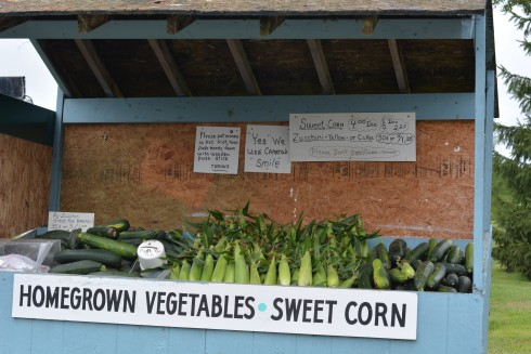 What to Eat in Cooperstown New York | The Naptime Chef