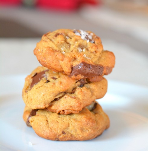 Naptime Chef Top 11 Chocolate Chip Cookie Recipes