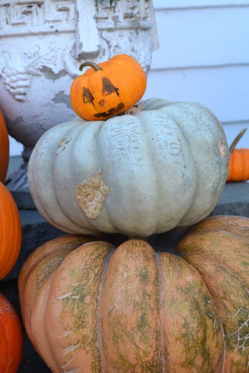 Balancing Halloween   The Naptime Chef