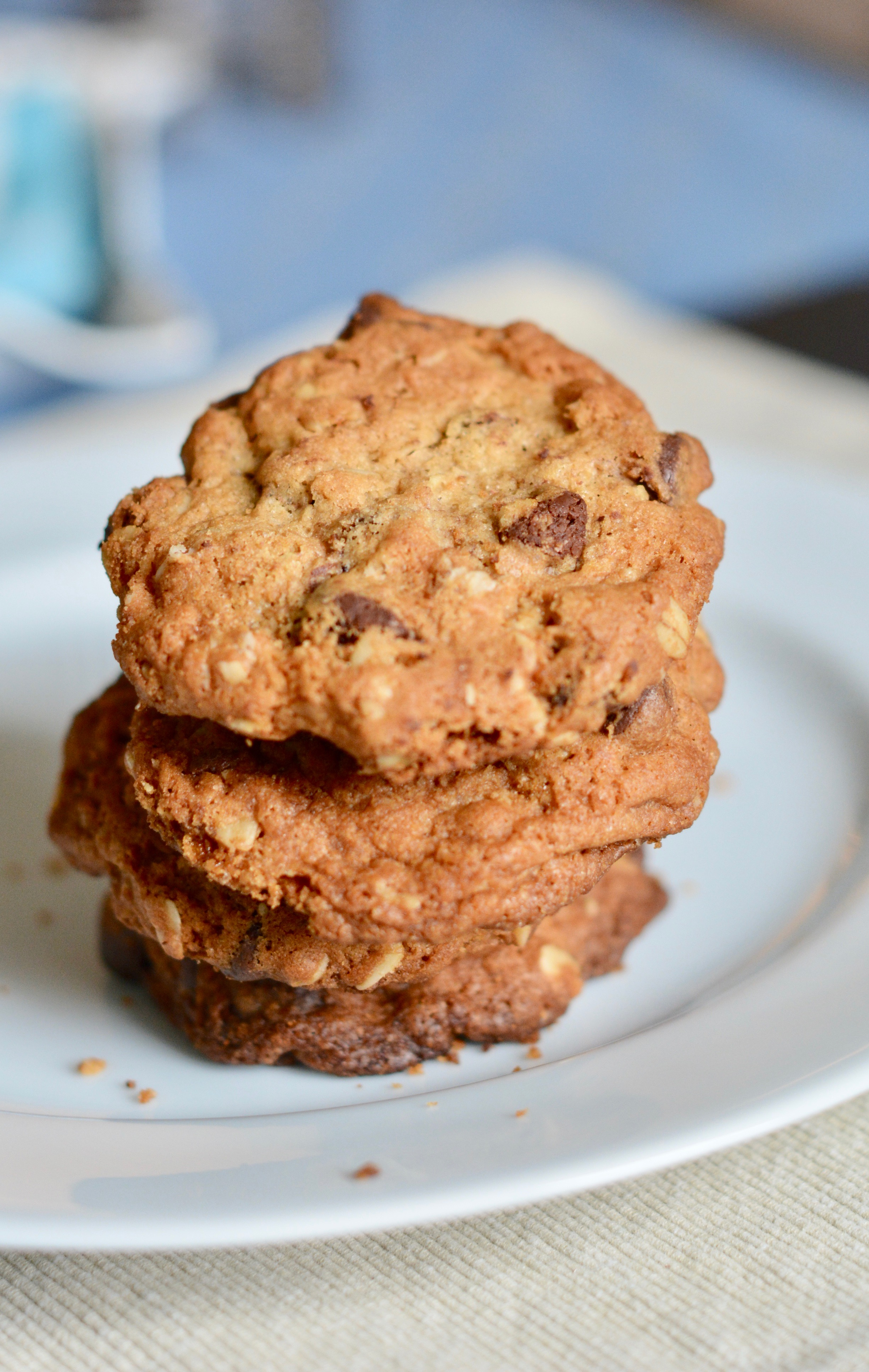 Cinnamon Oatmeal Chocolate Chip Cookies | The Naptime Chef