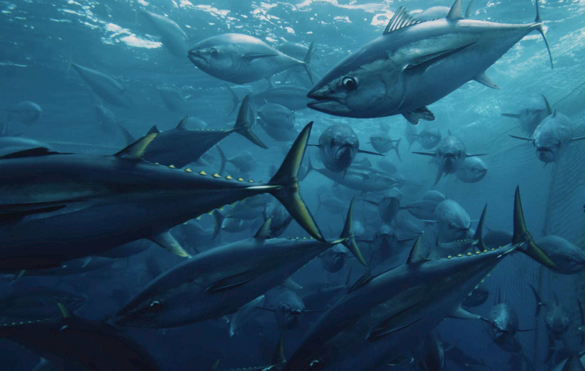 10 documentales ambientalistas que no te podes perder
