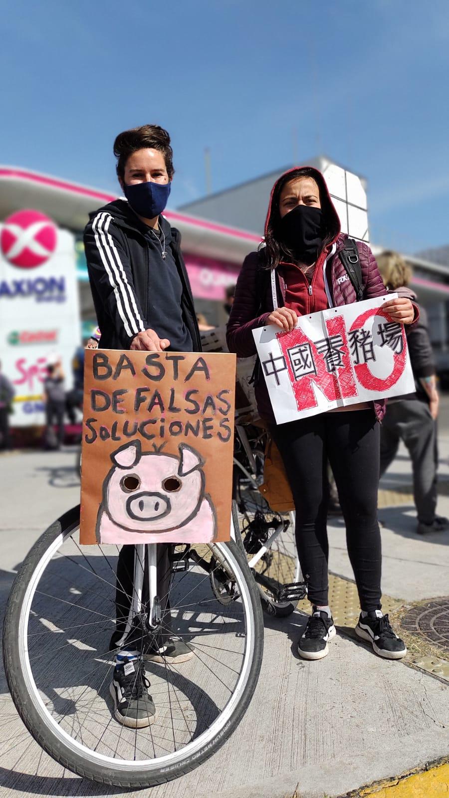 25A: manifestaciones contra el Acuerdo Porcino con China