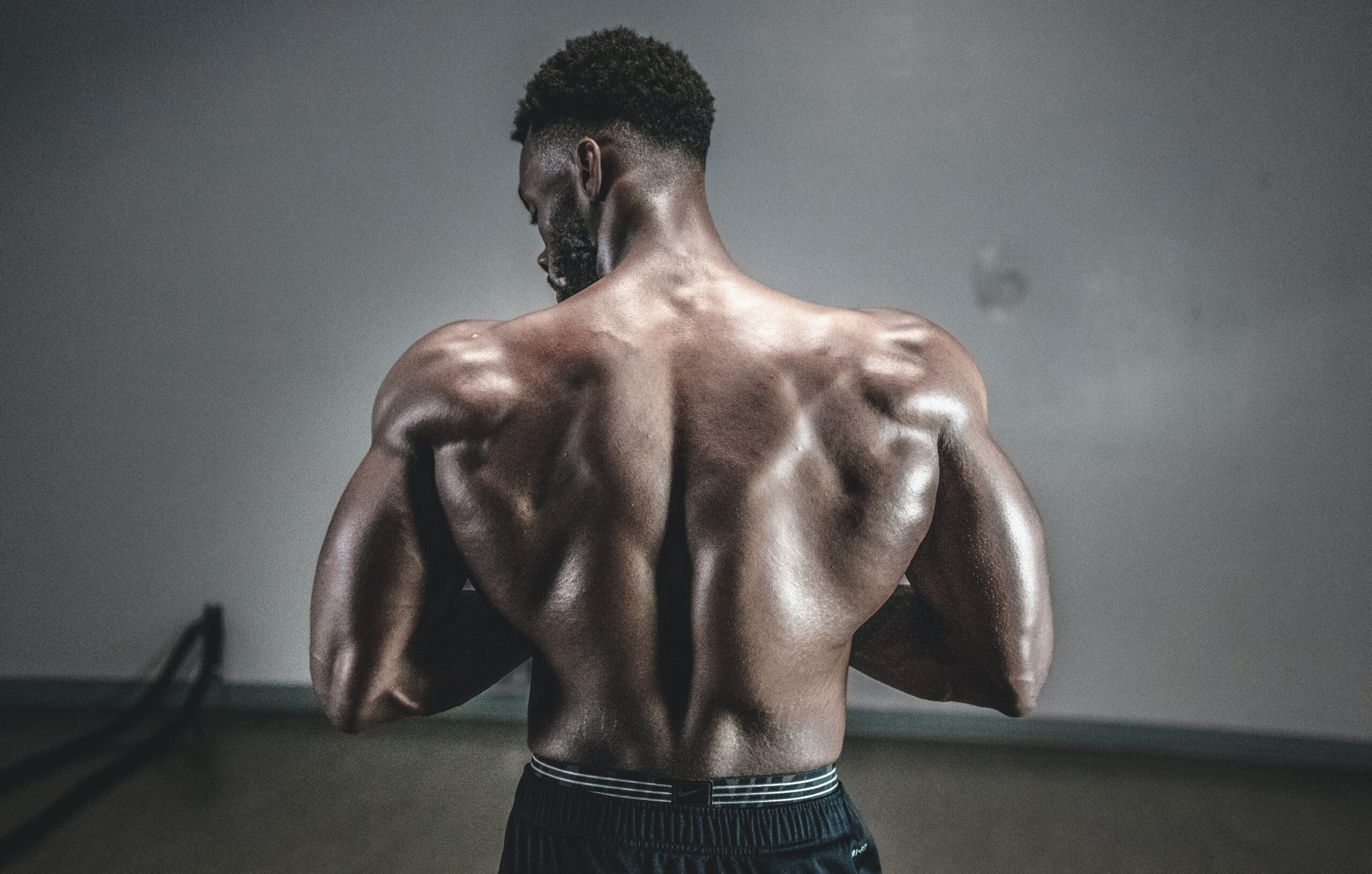 How can YOU BUILD MUSCLE ?