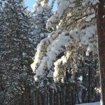 Idaho_County_Images_011