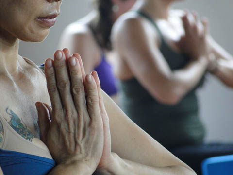 Topics in Yoga History and Philosophy for Radiantly Alive Teacher Training, Ubud, Bali