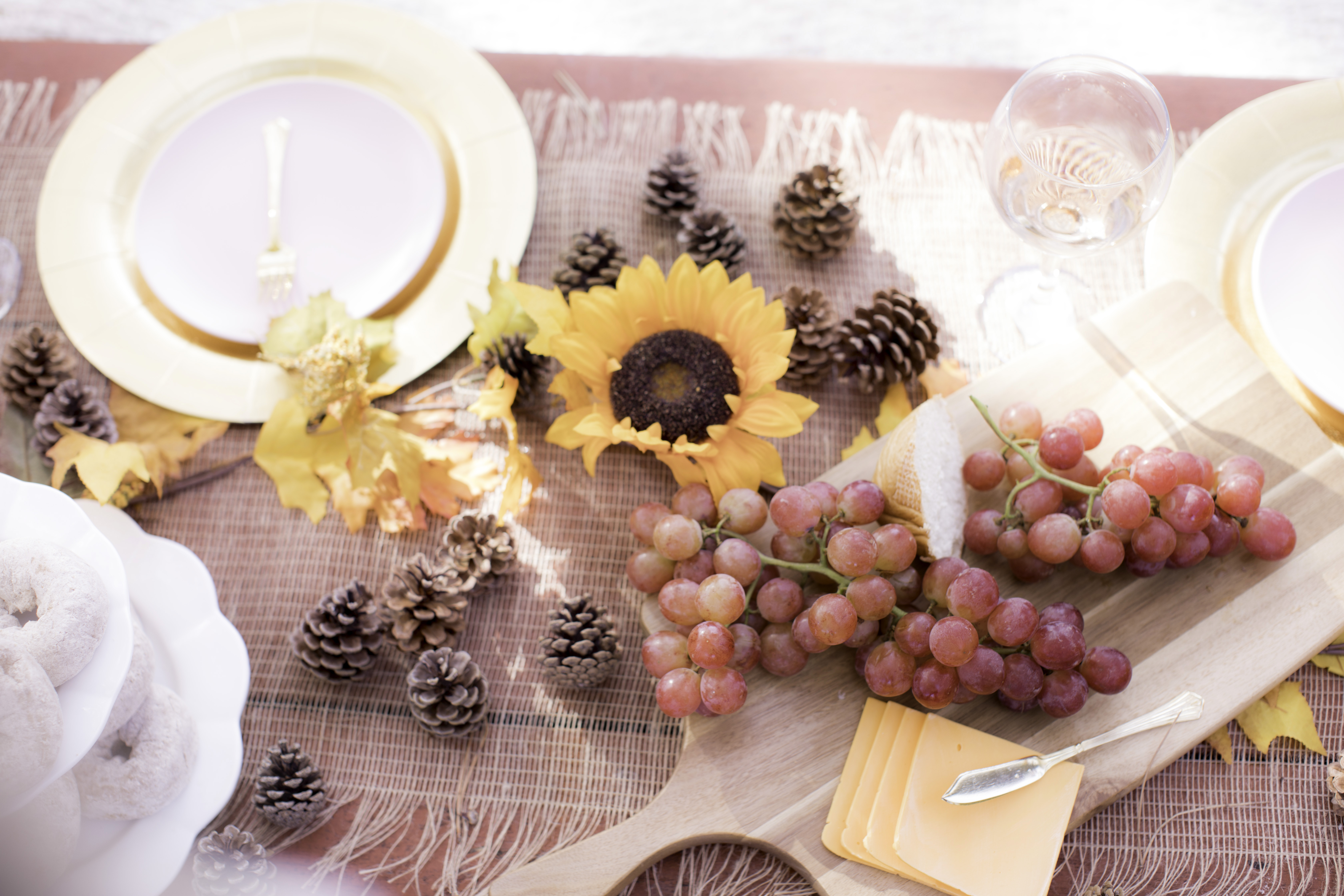 harvest picnick with barefoot wine, baily lamb