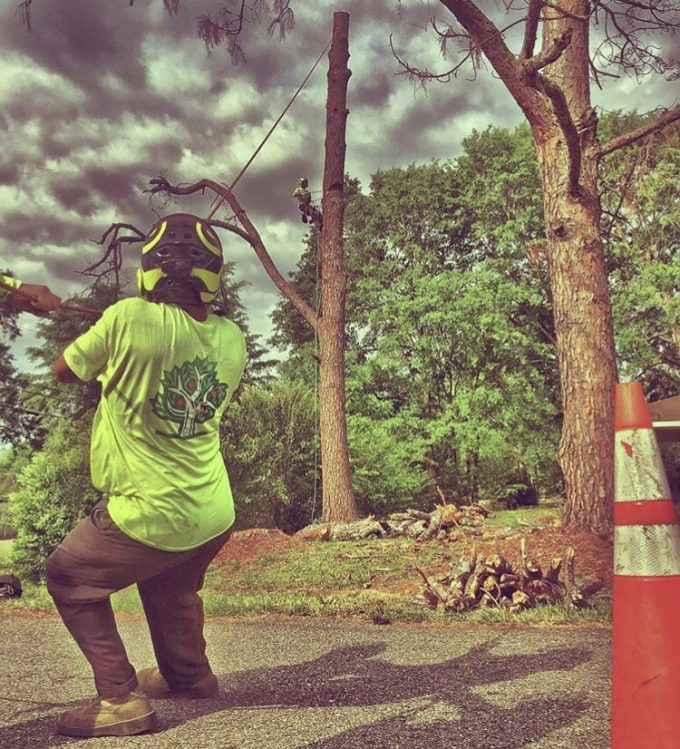 Tree Removal Service Prattville, Millbrook, Wetumpka and Montgomery, AL