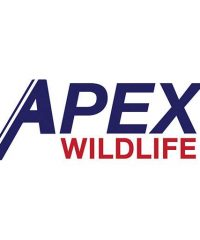 APX Wildlife Removal