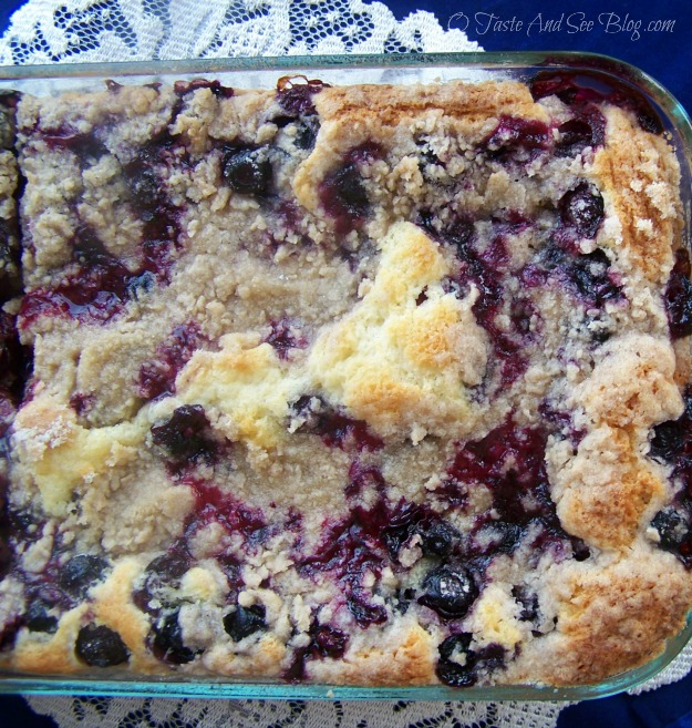 blueberry Buckle 091a