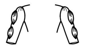 Sleeve E