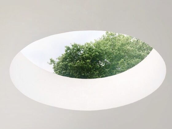 White roof with circular cut revealing some green trees outside.