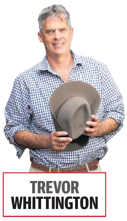 WA Farmers' CEO Trevor Whittington. Photo: The Countryman