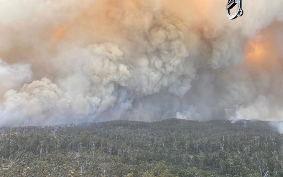 The Big Jack Mountain fire in NSW, February 2020. Photo: NSW Rural Fire Service.