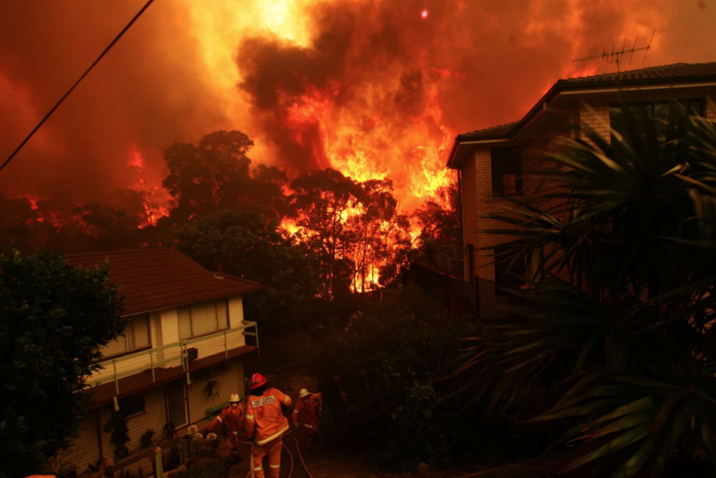 The Royal Commission into National Natural Disaster Arrangements has heard volunteer firefighters are dissatisfied with professional fire managers. Photo: NICK MOIR/SMH