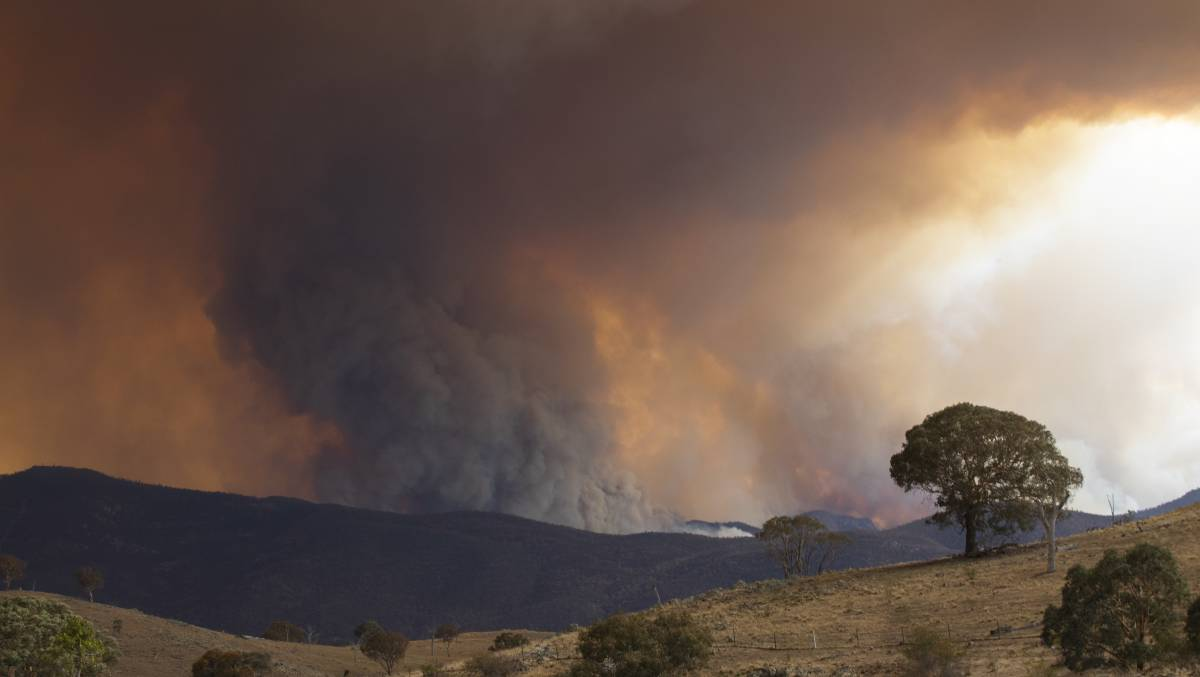 The Orroral Valley fire which destroyed most of Namadgi National Park also brought with it tensions between volunteer firefighters and the Emergency Services Agency. Picture: Jamila Toderas / Canberra Times