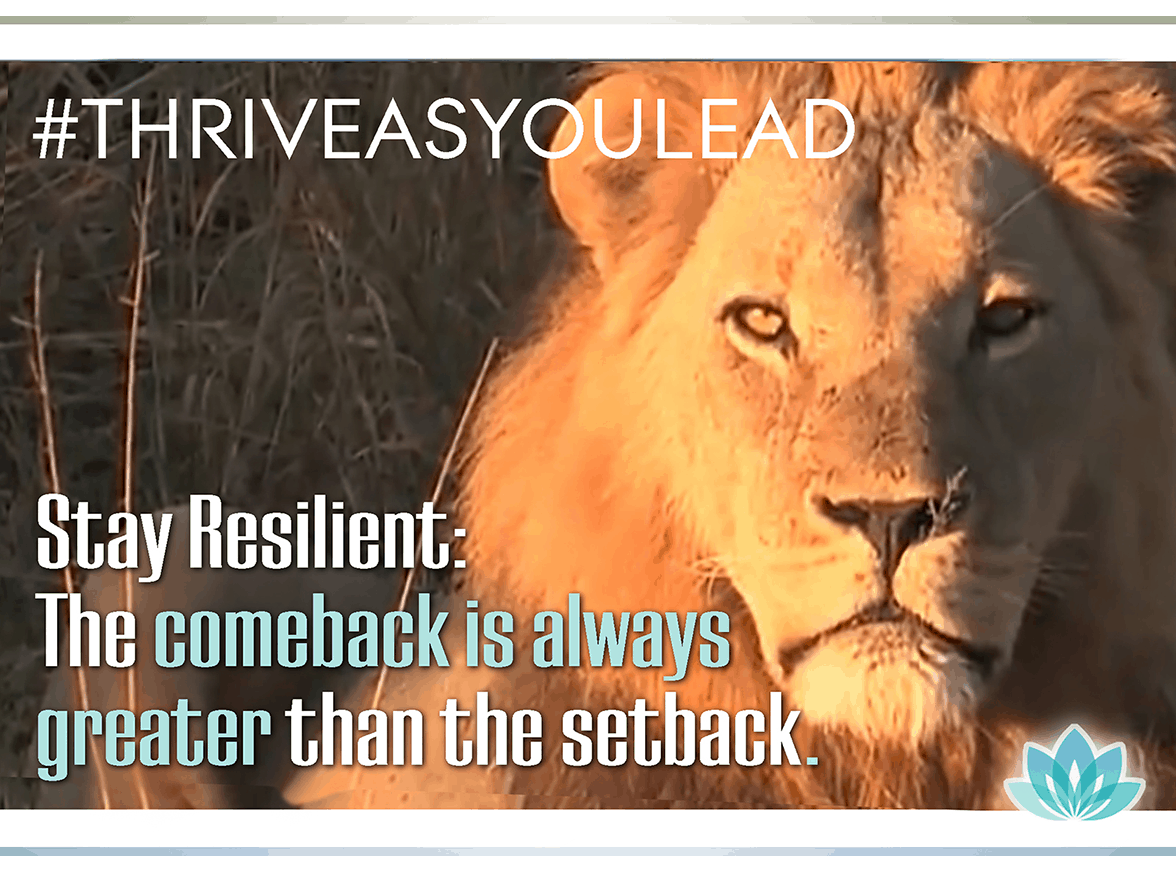 Transform your inner voice to one of positivity; turn setbacks into comebacks with inner resilience