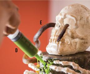 snake and skull moulds