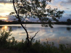 Large Pond at Sunrise - The Lodge at Parkers Pond - Rental Property