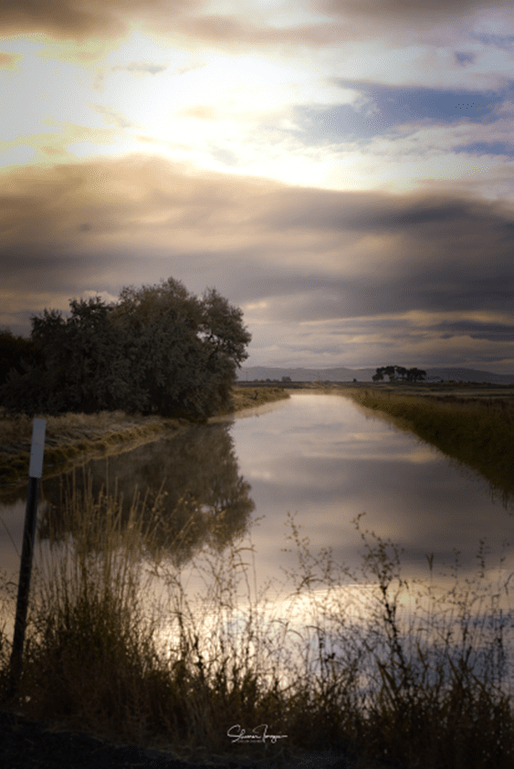 Klamath Project canal