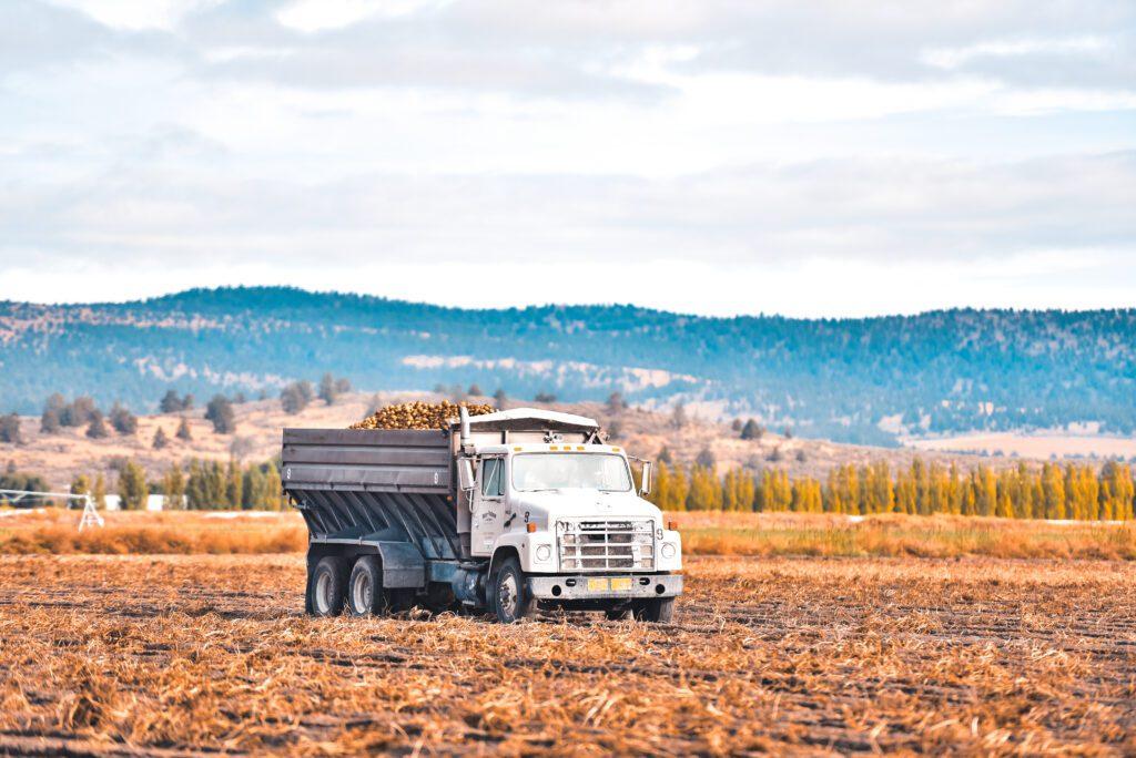 Potato truck in field
