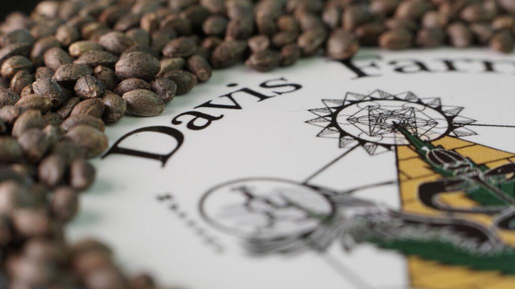 Close up photo of hemp seeds displayed over a sticker of the Davis Farms logo