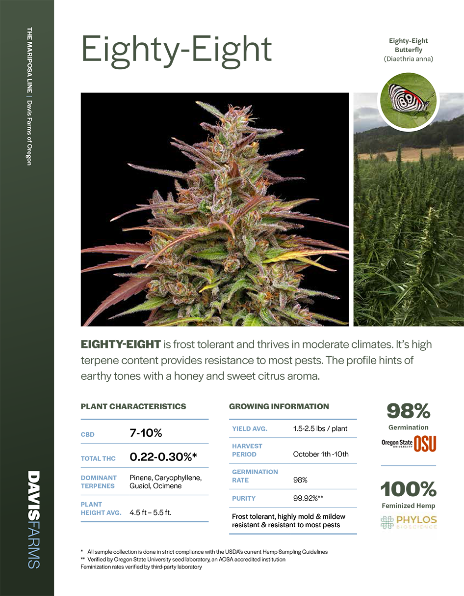 Eighty Eight Hemp lab results Cover