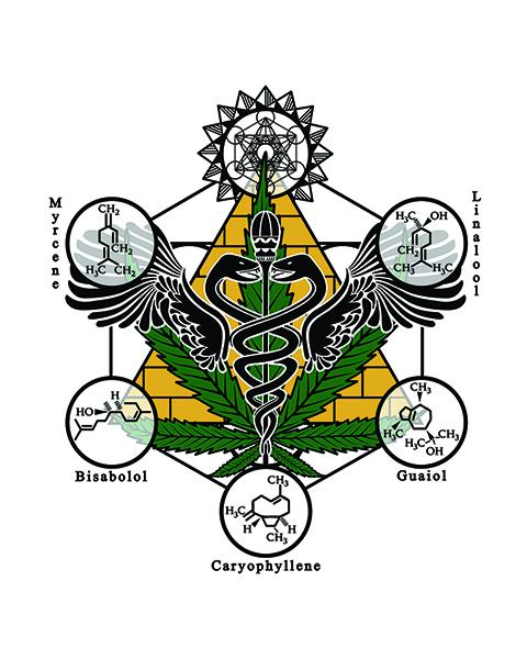 Davis Farms of Oregon full color logo, hemp farm