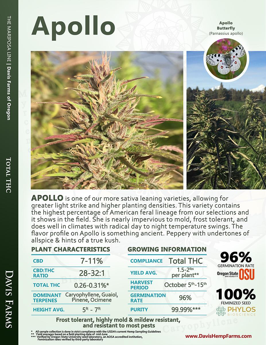 Available data for hemp variety Apollo