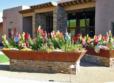Academy Villas Patio Flowers