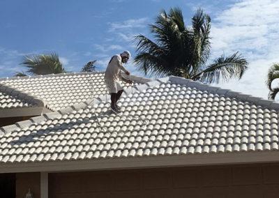 Pressure Washing: tile roof - aceperformanceplus.com