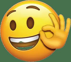 flybus happy costomers emoji