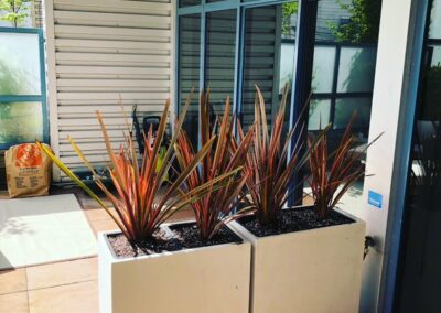 Landscaping company vancouver