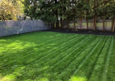 sodding landscaping vancouver