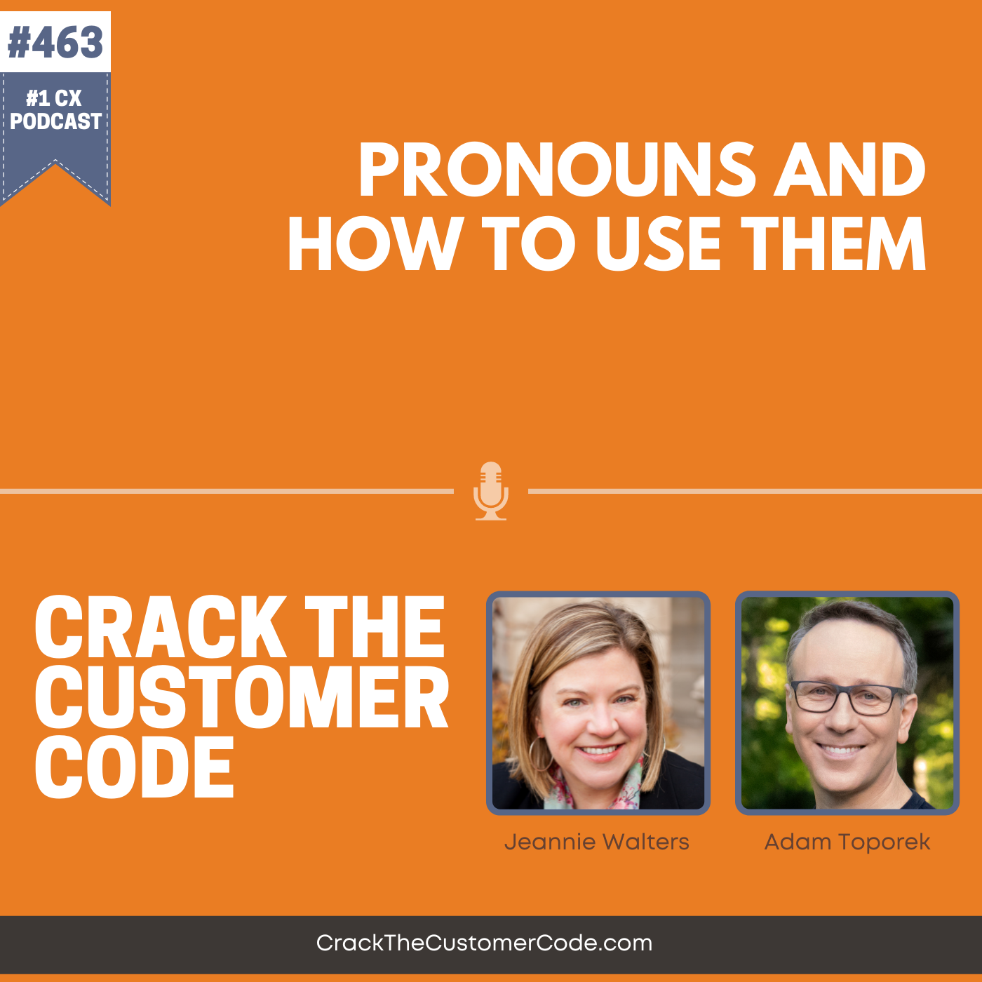 463: Pronouns and How to Use Them