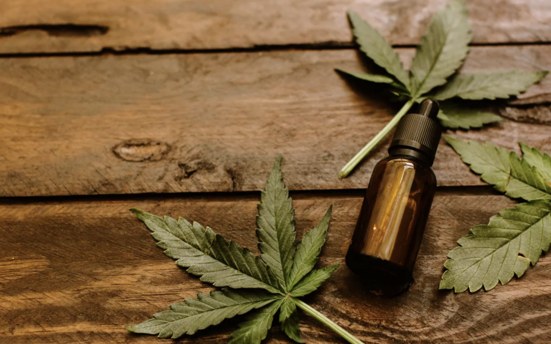 Colorado Hemp Processing and CBD Extraction Facility Grand Opening
