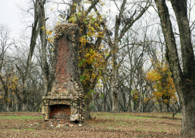 Old stone fireplace in middle of pecan field