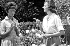 Raleigh Cigarettes Commercial Housewives 1962
