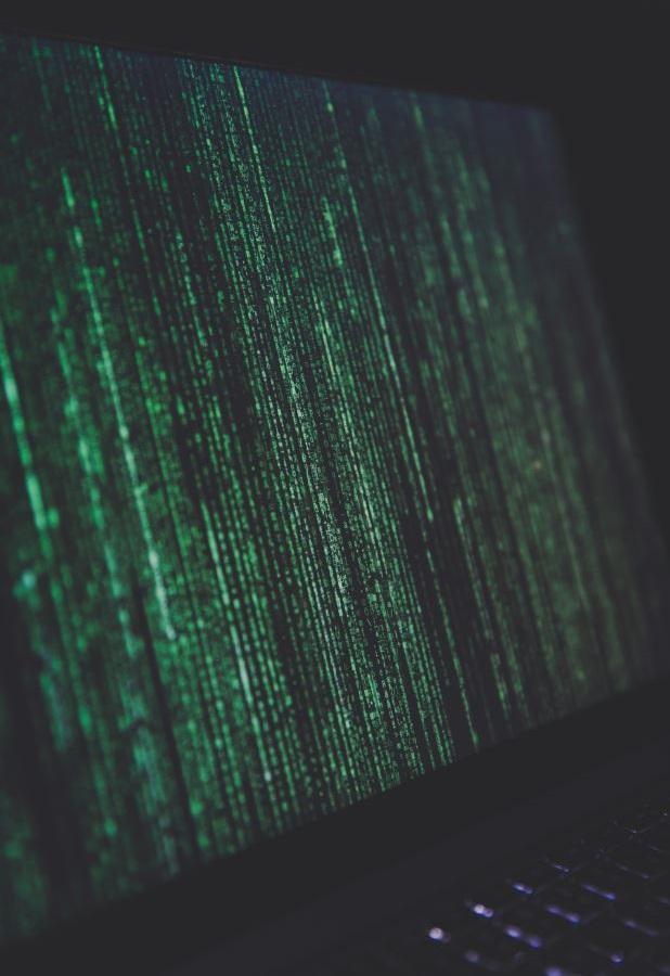 Web Developers Matrix Code Monitor