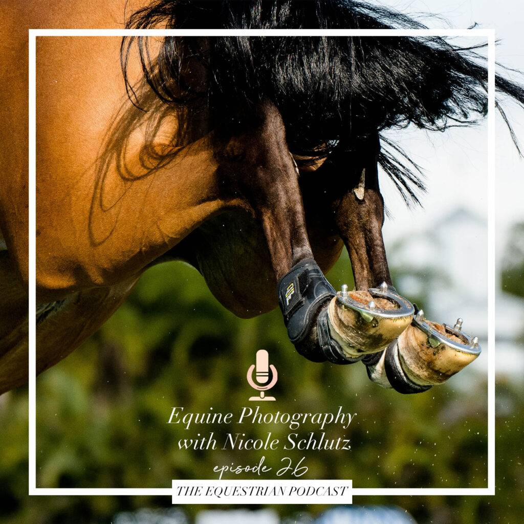 Equine Photography with Nicole Schultz