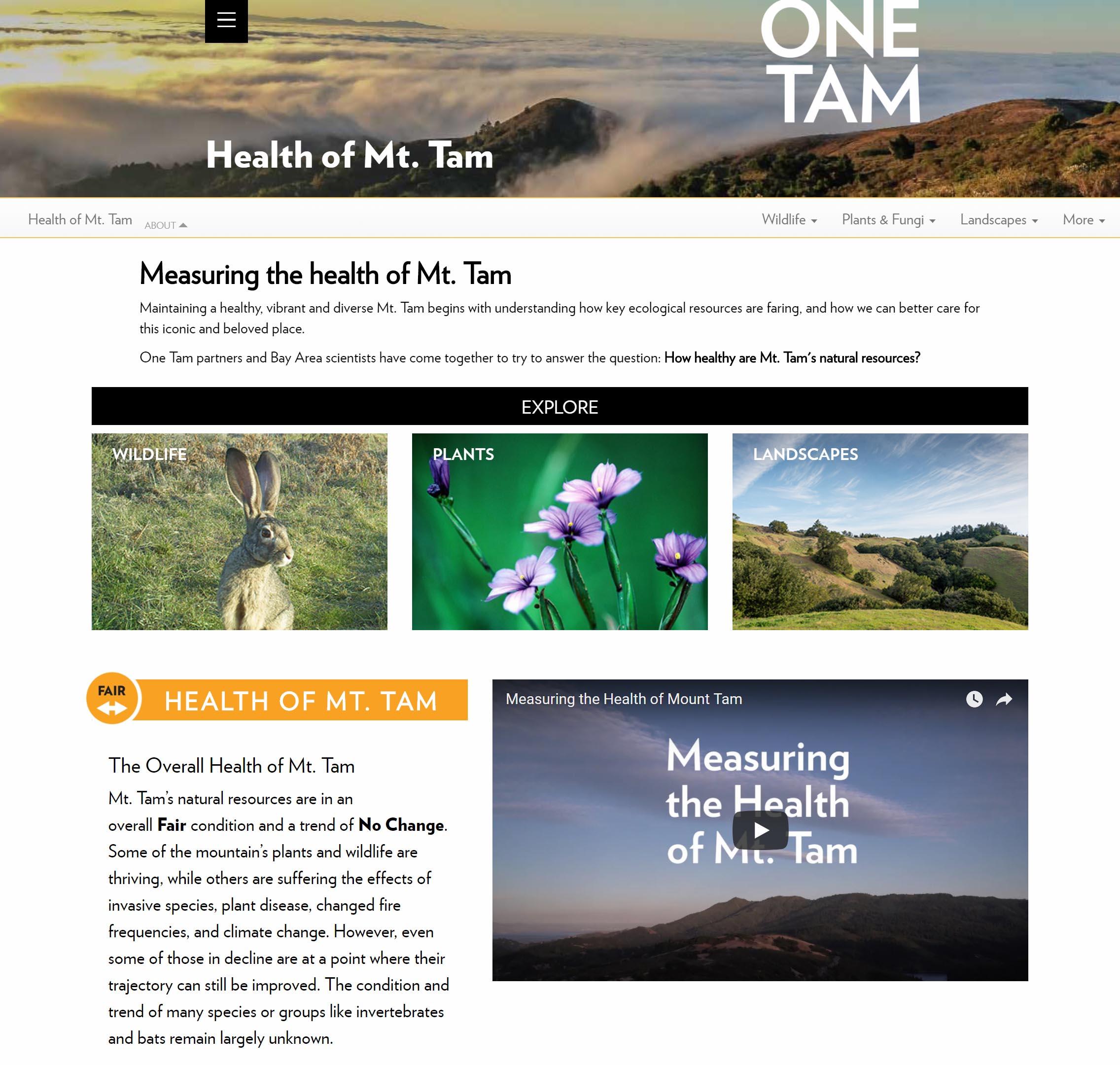'Health of Mt. Tam' webpage screenshot