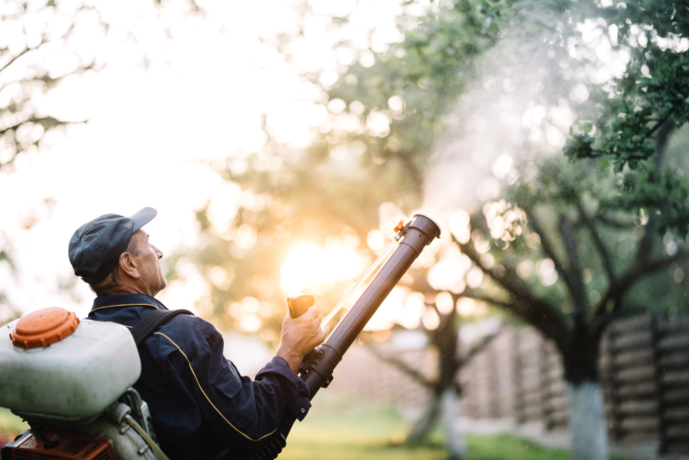mosquito control spraying